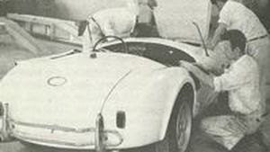 Recommended Reading - Ford Cobra Guide