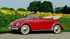 1954-'60 Volkswagen Convertible