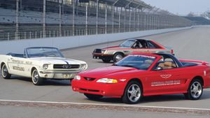 A guide to 8 collectible limited-edition Fox and SN-95 Mustangs