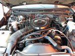 5.0 liter HO engine 1985 Monte Carlo SS